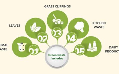 Guide To Household Green Waste