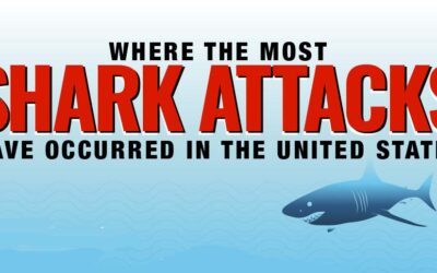 Where Most Shark Attacks Have Occurred in the United States