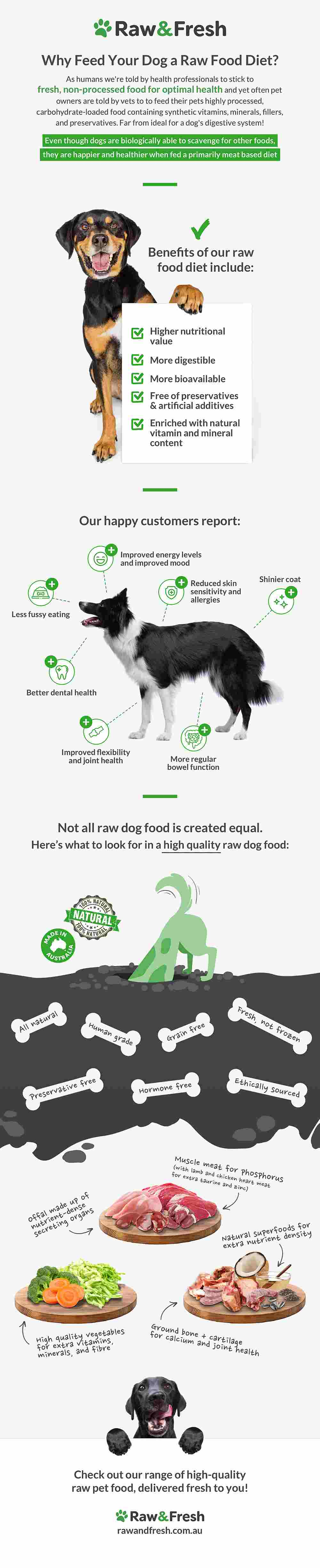 Why Feed Your Dog A Raw Food Diet?