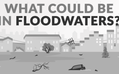 What Could Be in Floodwaters?