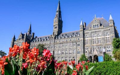 Top 30 Universities That Use the Most Green Energy